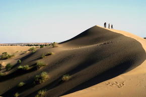 At Karakum (black sand) desert