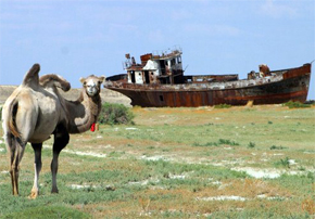 Photo of ex-Aral sea