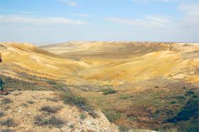 Ustyurt Reserve